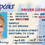 Mimi Coffey DWI Lawyer, Texas DWI, Texas ALR, Texas License Suspension